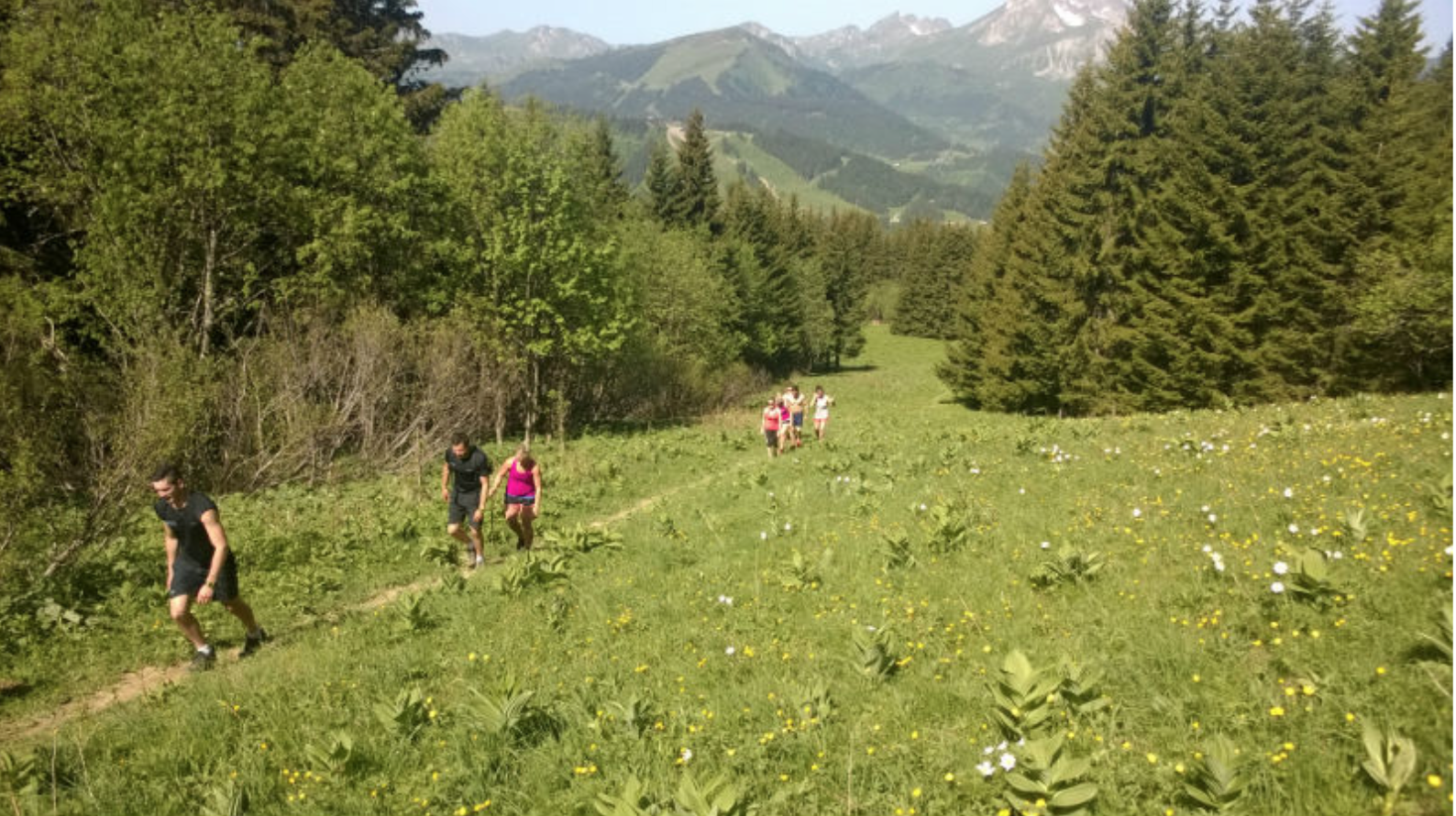 Wild Training in The Alps