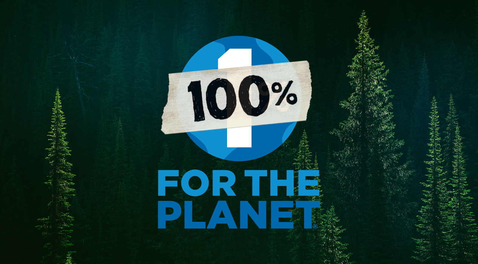 Patagonia: 100% For The Planet